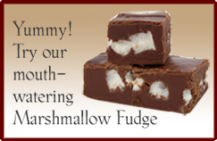 Yummy! Try our mouth- watering Marshmallow Fudge
